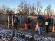 Kisvárdai menhelysegítő 2018