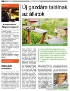 cics_cikk_lrinci_magazin.jpg